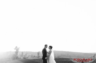 Wedding photos in the field at David Springer Estate