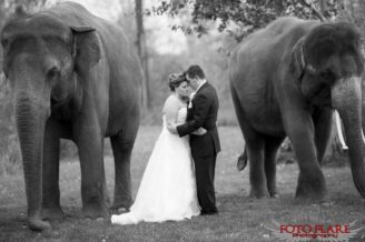 African Lion Safari Wedding photographs