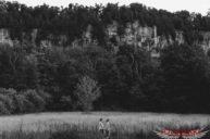 Engagement photo with Niagara Escarpment
