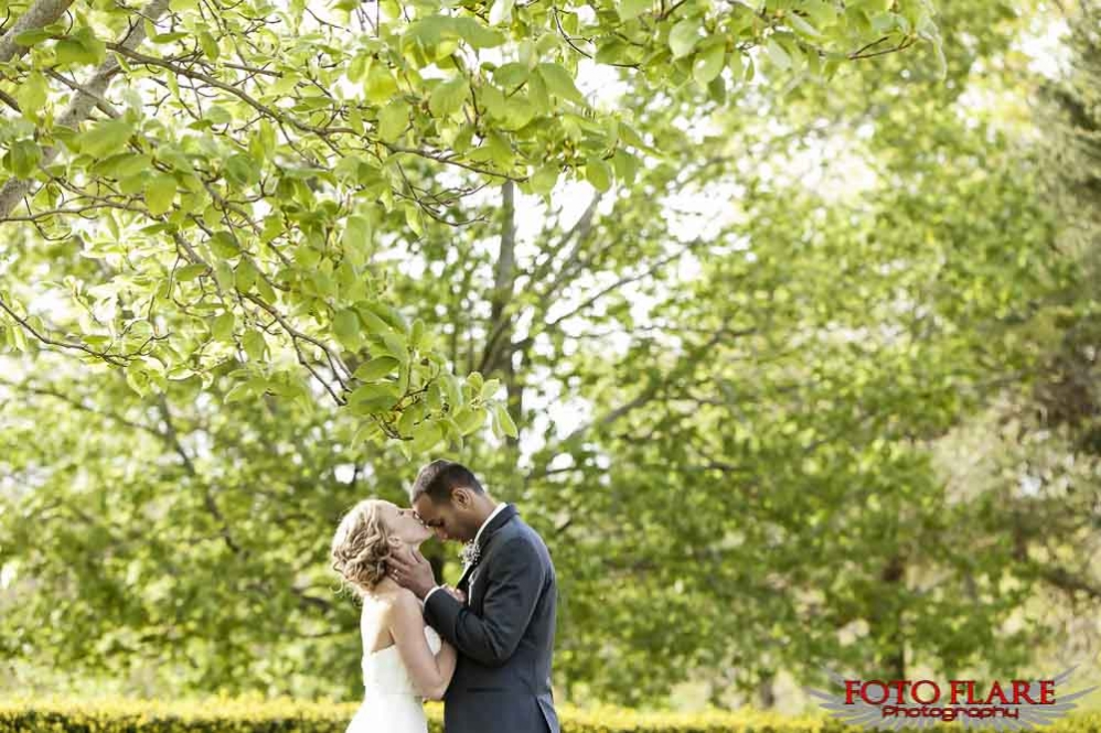 Kissing under a huge tree