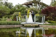 Wedding pictures at the rock garden RBG